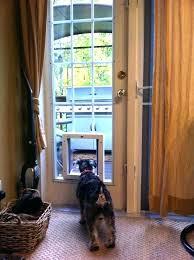patio door with pet door french door pet door dog back door with dog built in