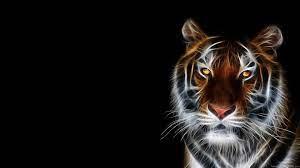 48+] 3D Animal Wallpapers for Desktop ...