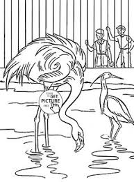 zoo cage coloring page. Contemporary Coloring Zoo Birds Coloring Page For Kids Animal Pages Printables Free   Wuppsycom Throughout Cage Coloring Page L