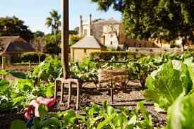 House And Garden Kitchens Vaucluse House Kitchen Garden Sydney Living Museums