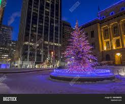 Park Lighting Calgary Urban Park Calgary Image Photo Free Trial Bigstock