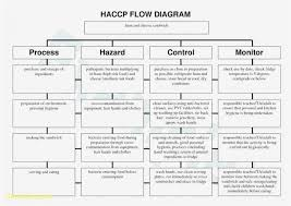 Haccp Plan Template Haccp Flow Chart Template Awesome Process Flow Chart Examples Free