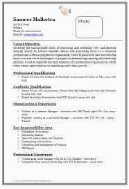 Free Professional Resume Examples Extraordinary Free Professional Resume Template Professional Cv Format Doc Simple