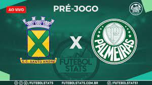 Pré-jogo – Santo André x Palmeiras – Escalações, Horário, Histórico e Onde  assistir – Campeonato Paulista 2021 - Futebol Stats