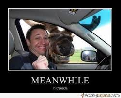 Funny pics/memes/gifs to cheer you up thread. - MoneySavingExpert ... via Relatably.com