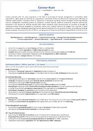 Free Resume Consultation Key Accomplishments Resume Examples Examples of Resumes 98