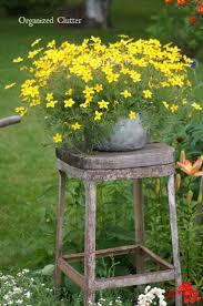 25 best ideas about garden junk on rustic
