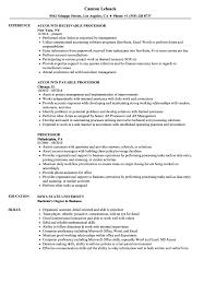 Processor Resume Samples Velvet Jobs
