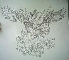 Drawings Of Phoenix