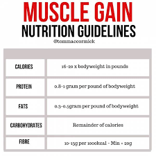 top 10 foods to gain muscle m