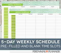 Daily Schedule Printable Editable Times Half Hourly Weekly