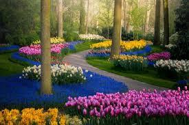 Трябва добре да обмислят мястото на цветна градина. Streetwatch Bg Statii