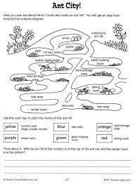 vision education alberta ant city worksheet