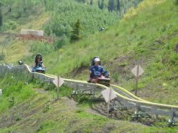 Alpine Park Alpine Coaster Mountain Side Resort Park City Utah Image