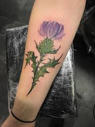 Milk Thistle By Kerry Gentle At Red Hot And Blue Tattoo Edinburgh