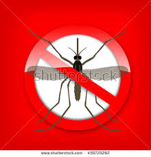 mosquito icon vector flat icon isolated on red background in a red crossed out circle
