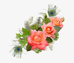 flower images png format free photo