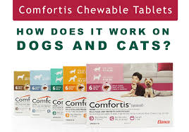 what is comfortis. Exellent What Comfortis Chewable Tablets  How Does It Work On Dogs And Cats  BestVetCare Intended What Is