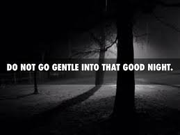do not go gentle into that good night by brett hilberg do not go gentle into that good night
