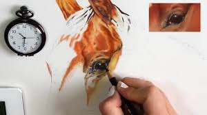 tutorial 2 how to draw a realistic horse s eye in colored pencils channel sheldene fine art you