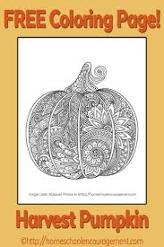 Harvest Pumpkin Coloring Page Adult Coloring