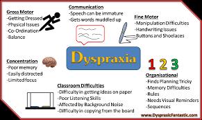 Post 029 Dyspraxia Diagram Dyspraxicfantastic Com