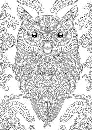 Small Picture OWL Coloring Pages for Adults Free Detailed Owl Coloring Pages