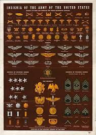 Military Basics And Rank And Insignia Chart The Scoop On