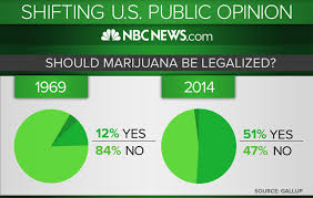 marijuana should not be legalized essay master thesis page numbers i need an argumentative essay on gun controls