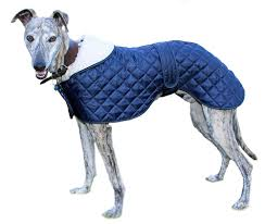 made in the uk greyhound whippet anorak dog coat navy 60cm 24inch