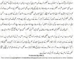 education essay urdu importance education benefits urdu essay no comments