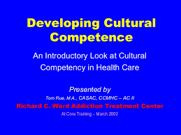 cultural competence in healthcare rue