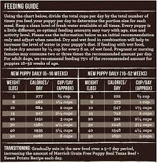 Merrick Dog Food Feeding Chart Merrick Grain Free Real Texas Beef Sweet Potato Puppy Food 4 Lb Bag