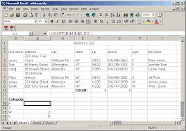 Excel Homework Address List