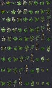<b>Plants</b> & Seeds - UOGuide, the Ultima Online Encyclopedia