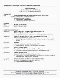 Resume Template For Bartender Best Of Sample Bartender Resume