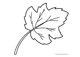 printable maple leaves coloring pages free leaf of page full size for s only