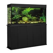 petco fish tanks. Unique Tanks And Petco Fish Tanks H