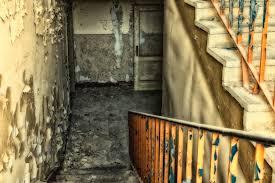 Weißer schimmel in wohnräumen kann die gesundheit beeinträchtigen. Schimmel Im Keller Was Gilt Es Zu Tun Heizungshero De