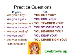 essay compulsory subject guides