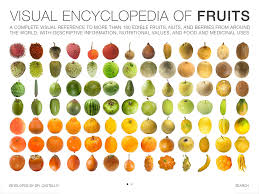 tropical fruit names. Brilliant Fruit Extraordinary Exotic Fruit Names Related Keywords Suggestions  Similiar Vegetables In On Tropical