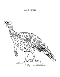 wild turkey coloring pages. Modren Pages With Wild Turkey Coloring Pages E
