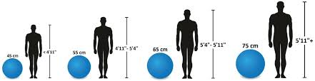 Exercise Ball Size Chart Theraband Exercise And Stability Ball Swiss Ball Height Chart