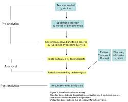 File Clinical Laboratory Work Flow Jpg Wikimedia Commons