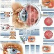 Boomer And Senior Vision News Macular Dystrophy Takes Its