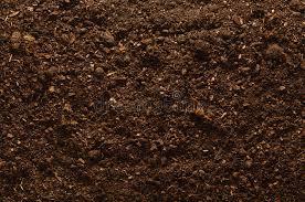 fertile garden. download fertile garden soil texture background top view stock image - of humus, raked