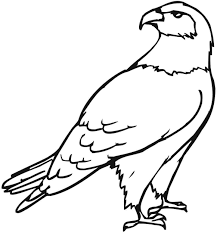 Small Picture Eagle Color Page Coloring Pages Online