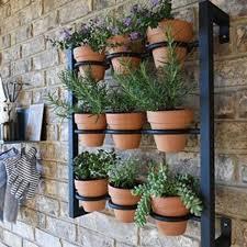 hanging planter indoor outdoor herb