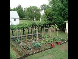 backyard vegetable gardens backyard