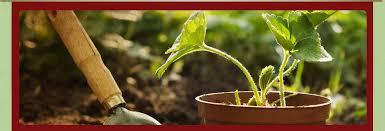 garden center nj. Browse; Green House · Garden Maintenance Center Nj